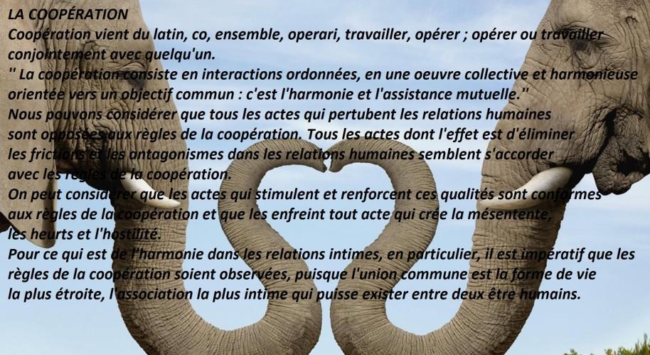 Tous les actes dont l'effet est d'éliminer les frictions et les antagonismes dans les relations humaines semblent s'accorder avec les règles de la coopération.