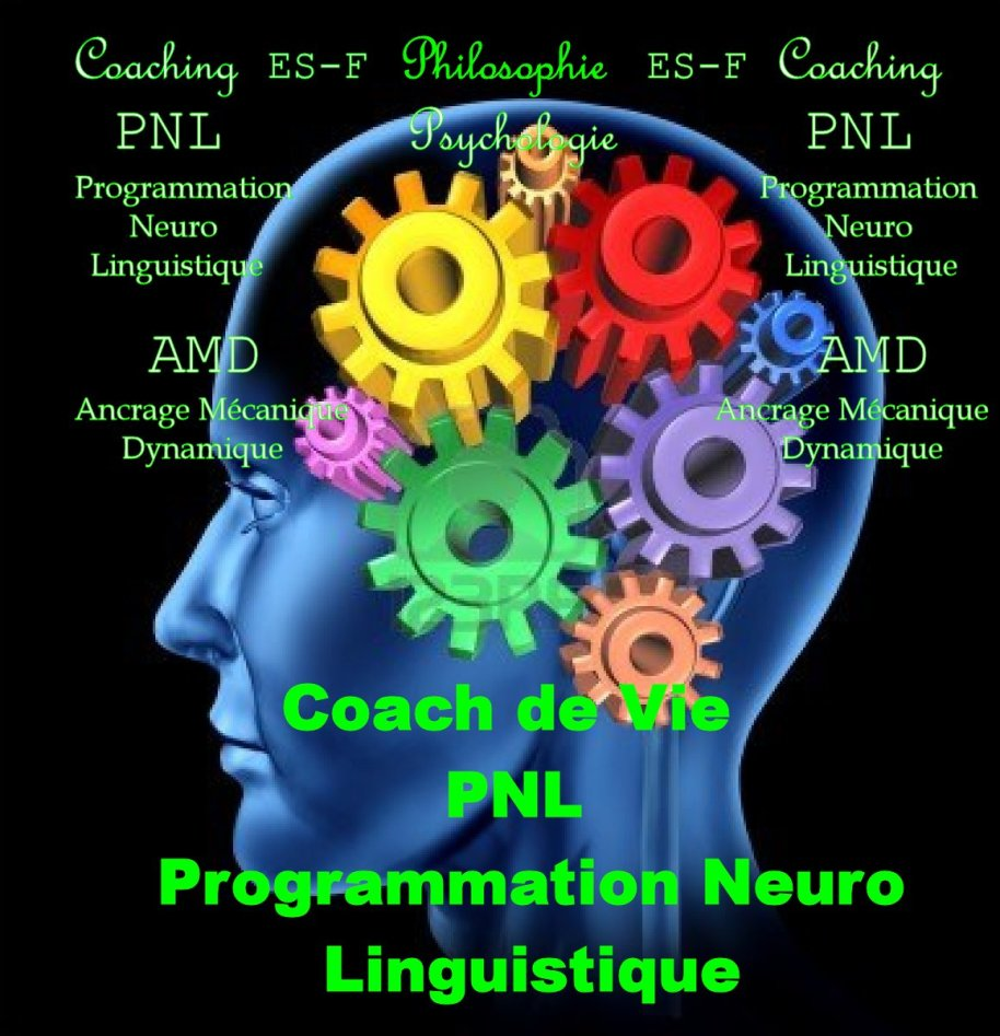 PNL: Programmation Neuro Linguistique